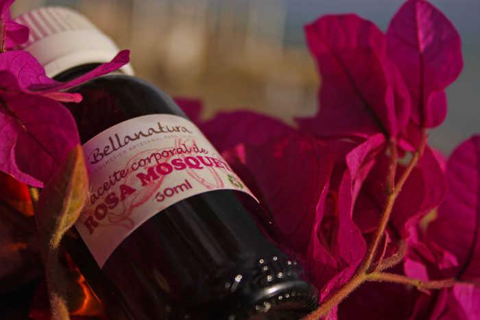 El aceite rosa mosqueta. sus grandes propiedades 2