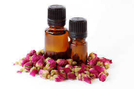 El aceite rosa mosqueta: sus grandes propiedades 1