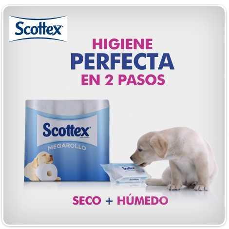 higiene perfecta