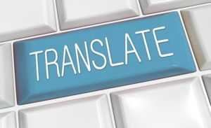 traducir botin