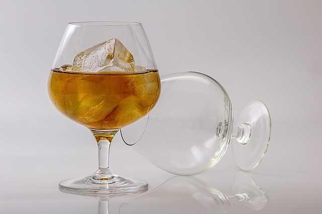 Fricandó al brandy 1