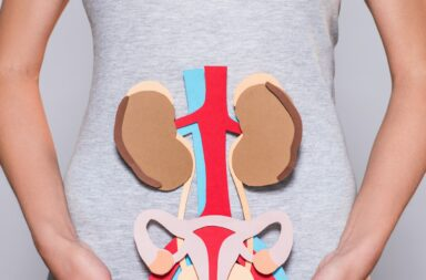 cropped shot of woman with paper made human internal organs and female reproductive system on grey